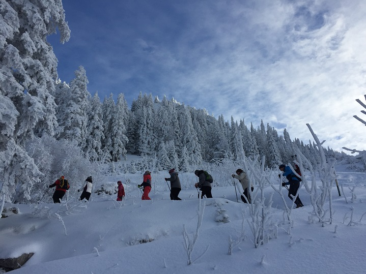 Hiking Tours im Winter